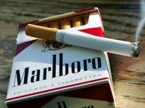 Купить сигареты дешево в спб розница как заказать доставку сигарет такси